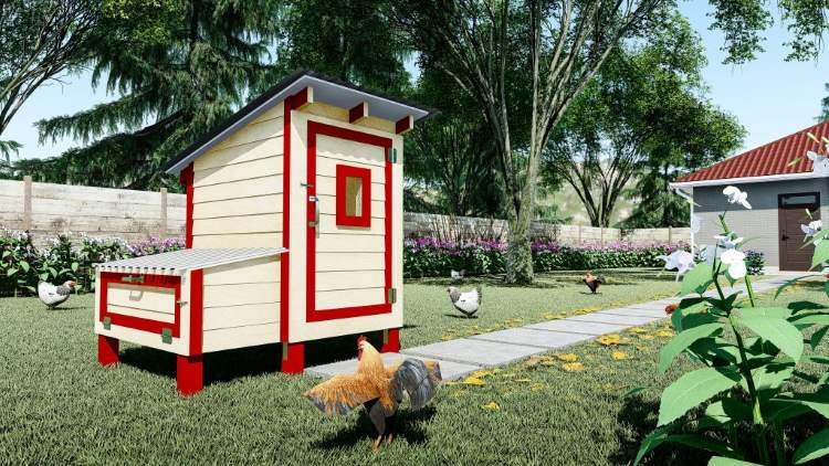 Build This Chicken Coop